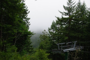 View of the fog from the top